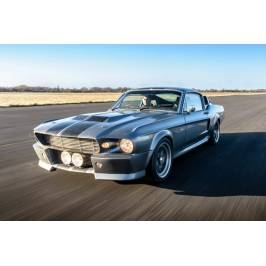 Product information Eleanor Mustang GT500 Experience